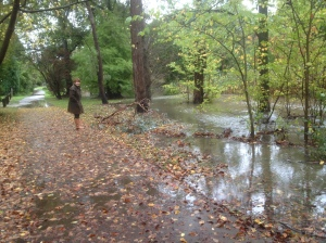 The flooded creek