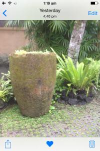 A pot in Bali