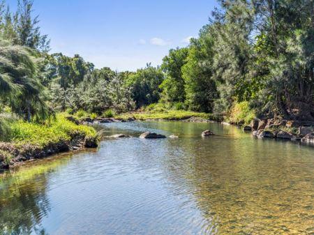 River flowing through Currumbin Eco-village