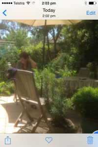 A heaven of garden