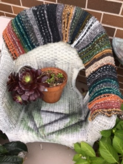 IMG_1144 scarf